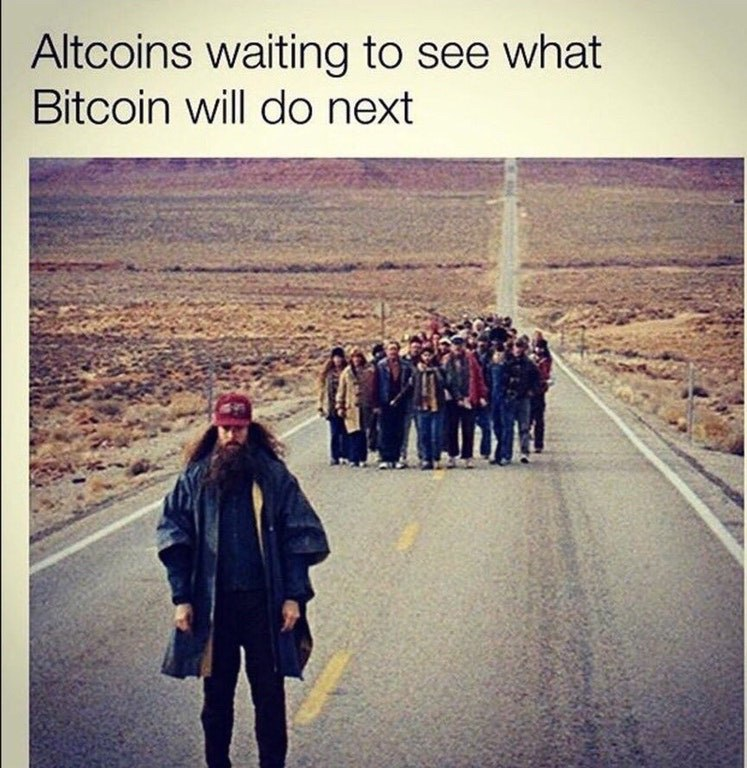 Altcoins Waiting To See What Bitcoin Will Do Next - Crypto Memes