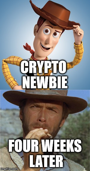Crypto Newbie vs Four Weeks Later - Crypto Memes