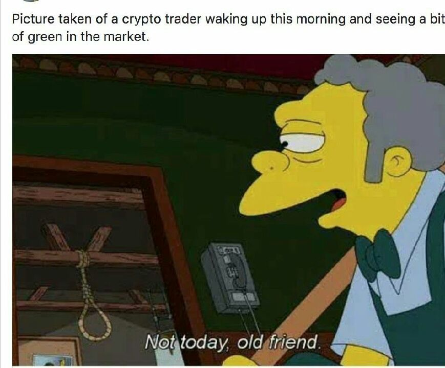 Crypto Trader Waking Up This Morning And Seeing A Bit Of Green In The Market - Crypto Memes