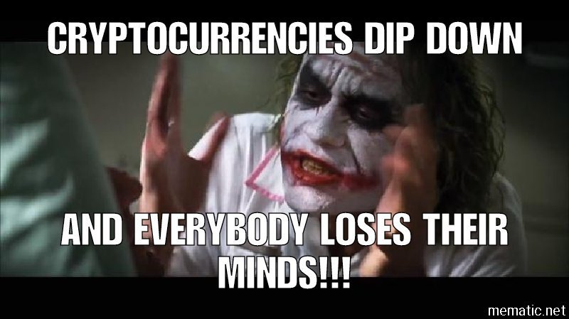 Cryptocurrencies Dip Down And Everybody Loses Their Minds Crypto Memes