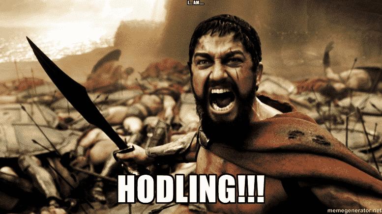 HODLING - Crypto Memes