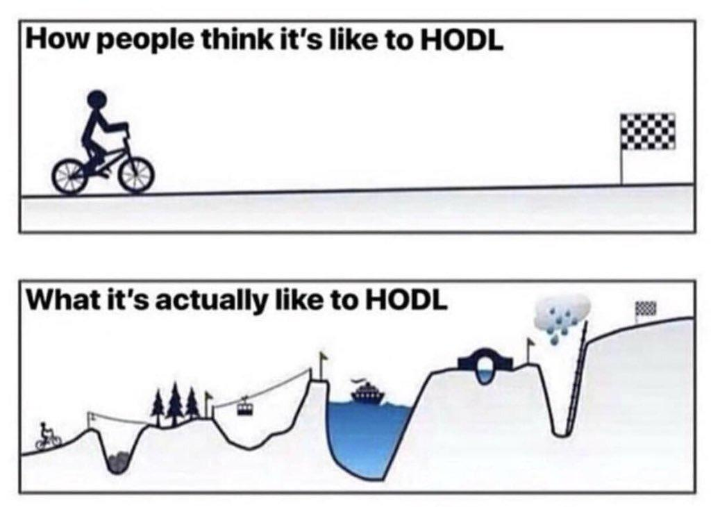 How People Think Its Like To HODL vs What Its Actually Like To HODL - Crypto Memes