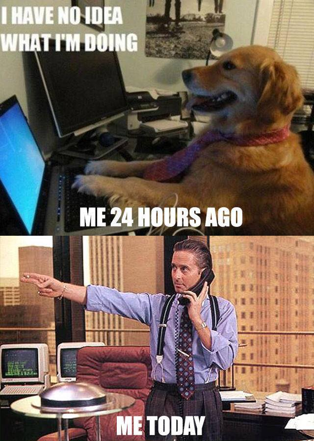 I Have No Idea What Im Doing 24 Hours Ago vs Today - Crypto Memes