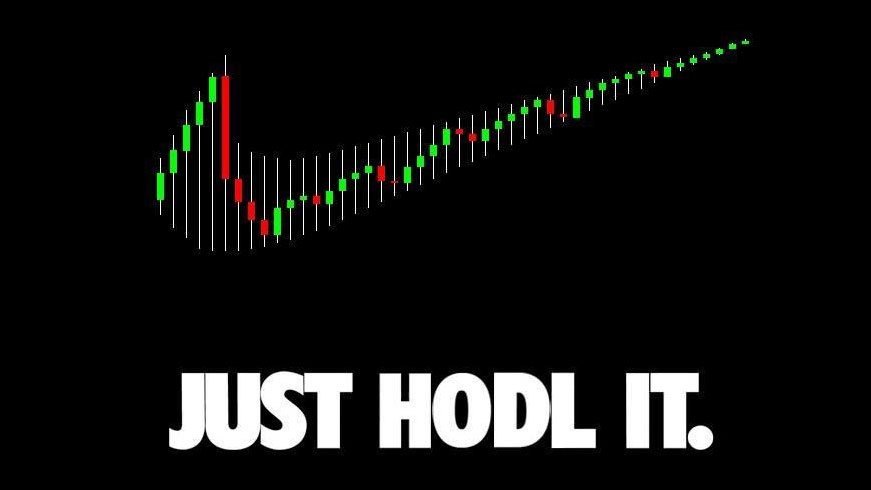 Just HODL It - Crypto Memes
