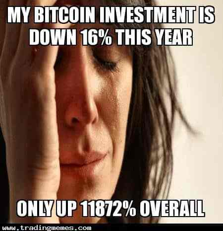 My Bitcoin Investment Is Down 16 Percent This Year But Only Up 11872 Percent Overall - Crypto Memes